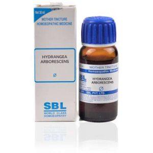 SBL Hydrangea Arborescens 1X (Q) (30ml)